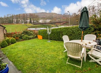 Thumbnail 1 bed semi-detached bungalow for sale in Clydach, Abergavenny