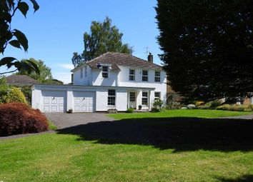 Thumbnail 4 bed detached house for sale in Badingham Drive, Fetcham, Leatherhead