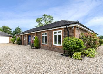 Thumbnail 5 bed detached house for sale in Seabrook Road, Kings Langley, Hertfordshire