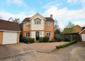 Thumbnail 3 bed detached house for sale in Bulrush Close, Braintree, Essex