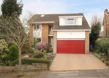 Thumbnail 4 bed detached house for sale in Silverdale Close, Sheffield