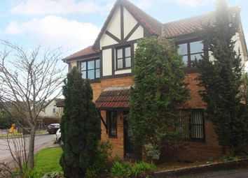 Thumbnail 4 bed detached house for sale in Mulberry Close, Paignton