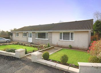 Thumbnail 7 bed detached bungalow for sale in Romanhill Road, Hardgate, West Dunbartonshire