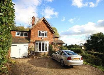 Thumbnail 4 bed detached house to rent in Church Lane, Brook, Godalming