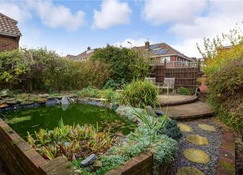 Thumbnail 3 bed detached bungalow for sale in Hillside, Portslade, Brighton, East Sussex
