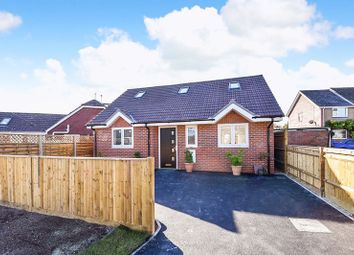 Thumbnail 2 bed bungalow for sale in Halfrey Close, Fishbourne, Chichester