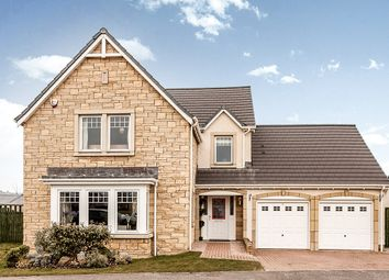 Thumbnail 4 bed detached house for sale in Orchard Way, Perth