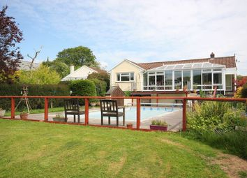 4 bed detached bungalow for sale in Lynher Way, North Hill, Nr Launceston. PL15