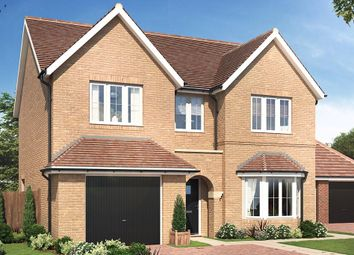 Thumbnail 4 bed detached house for sale in Sandy Road, Potton, Sandy, Bedfordshire