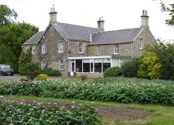 Thumbnail Farm for sale in Whitemire Farm, Duns