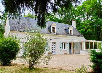 Thumbnail 4 bed property for sale in Chouze-Sur-Loire, Indre-Et-Loire, France