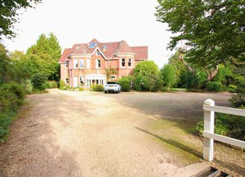 Thumbnail 2 bed terraced house to rent in Rhinefield Road, Brockenhurst