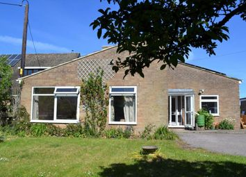 Thumbnail 3 bed detached bungalow to rent in Church Street, Northbrook, Micheldever, Winchester