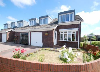 3 bed terraced house for sale in Brockley Avenue, South Shields NE34
