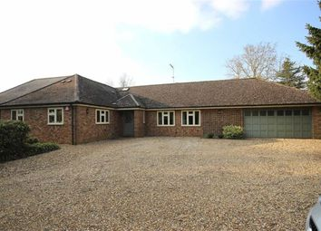 Thumbnail 4 bed detached house for sale in Mackerye End, Harpenden, Hertfordshire
