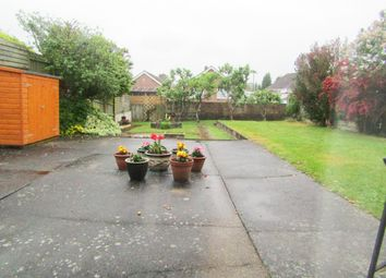 Thumbnail 1 bed flat to rent in Castlewood Avenue, Newton Abbot