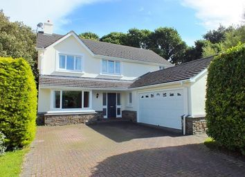 Thumbnail 4 bed detached house for sale in St. Stephens Meadow, Sulby, Isle Of Man