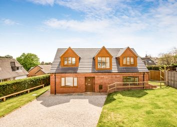 Thumbnail 3 bed detached house for sale in Doles Lane, Findern, Derby
