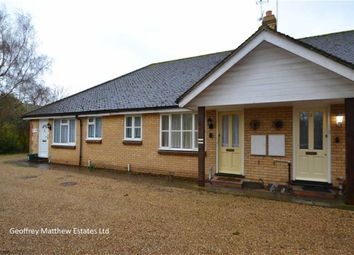 Thumbnail 2 bed bungalow for sale in Potter Street, Harlow, Essex