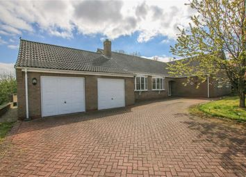 Thumbnail 5 bed bungalow for sale in Mount Pleasant, Binbrook, Lincolnshire