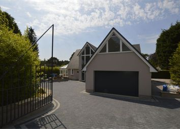 Thumbnail 4 bed detached house to rent in Thwaite Road, Poole, Dorset