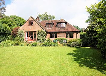 Thumbnail 4 bed detached house for sale in Pine View Close, Haslemere