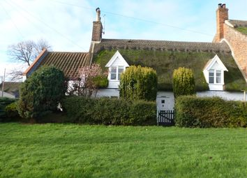 Thumbnail 3 bedroom semi-detached house for sale in The Green, Martham, Great Yarmouth