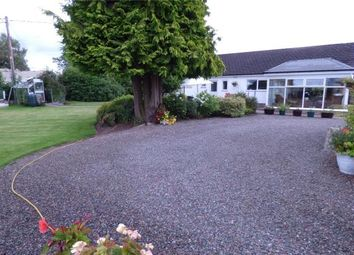 Thumbnail 3 bed detached bungalow for sale in Almara, Hunters Holme, Longtown, Cumbria