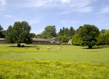 North Bovey, Newton Abbot, Devon TQ13. 4 bed equestrian property for sale