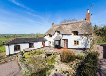 Thumbnail 4 bed cottage for sale in Tedburn St. Mary, Exeter