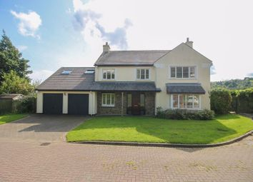 Thumbnail 5 bed detached house for sale in Lower Cronk Orry, Minorca Hill, Laxey, Isle Of Man