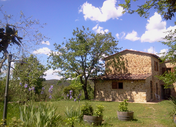 Thumbnail 4 bed farmhouse for sale in Murlo, Siena, Tuscany, Italy