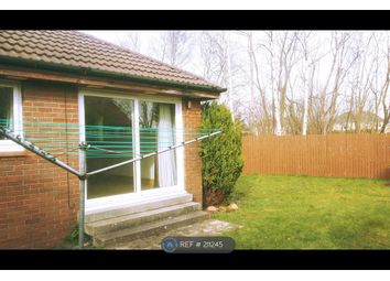 Thumbnail 1 bedroom bungalow to rent in Arnott Quadrant, Motherwell