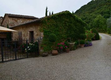 Thumbnail 5 bed villa for sale in Torrita Di Siena, Tuscany, Italy