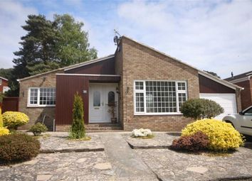 Thumbnail 2 bed detached bungalow for sale in Hillside Drive, St Catherines Hill, Christchurch, Dorset