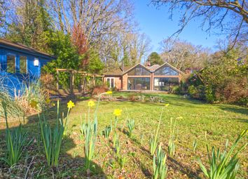 Thumbnail 4 bed detached bungalow for sale in Guildford Road, Normandy, Guildford