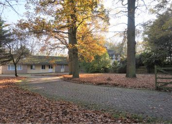 Thumbnail 5 bed detached bungalow for sale in Lodge Road, Holton, Halesworth