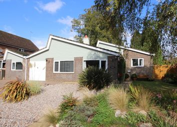 Thumbnail 4 bed detached bungalow for sale in Tichborne Down, Alresford