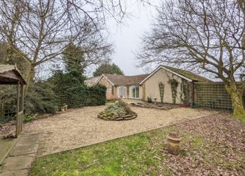 Thumbnail 2 bed detached bungalow to rent in Guilsborough Road, West Haddon, Northampton