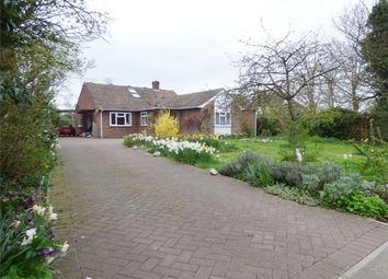 Thumbnail 4 bed detached bungalow for sale in Ramsey Road, Warboys, Huntingdon