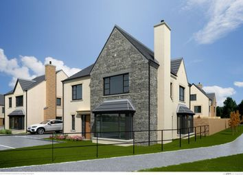 Thumbnail 4 bed detached house for sale in The Orchid, Ferrard Meadow, Antrim