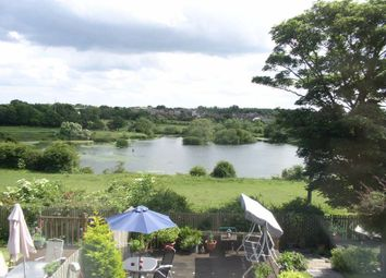 Thumbnail 4 bed detached house for sale in Winford Grove, Wingate