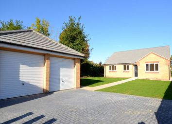 Thumbnail 3 bed bungalow for sale in Billing Road East, Abington Vale, Northampton