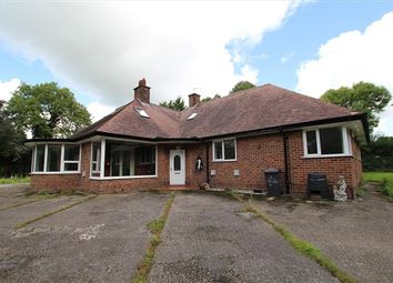 Thumbnail 4 bed bungalow to rent in D Urton Lane, Broughton, Preston