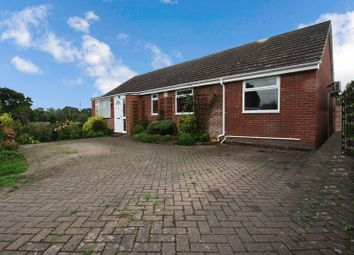 Thumbnail 4 bed bungalow for sale in Vine Gardens, Winchester Road, Bishops Waltham, Southampton