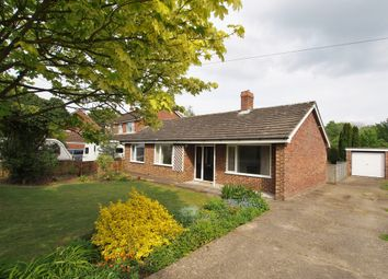 Thumbnail 3 bedroom detached bungalow to rent in Norwich Road, Tacolneston, Norwich
