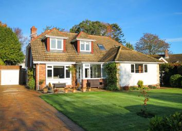 Thumbnail 4 bed detached bungalow to rent in Lymington, Hampshire