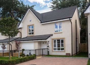 "Thumbnail 4 bedroom detached house for sale in ""Rothesay"" at Rowan Street, Wishaw"