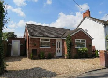 Thumbnail 3 bed bungalow to rent in Frimley, Camberley