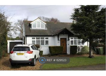 Thumbnail 4 bed bungalow to rent in Fairfield Road, Petts Wood, Orpington